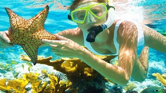 Ngắm san hô là một trải nghiệm thú vị được nhiều du khách yêu thích