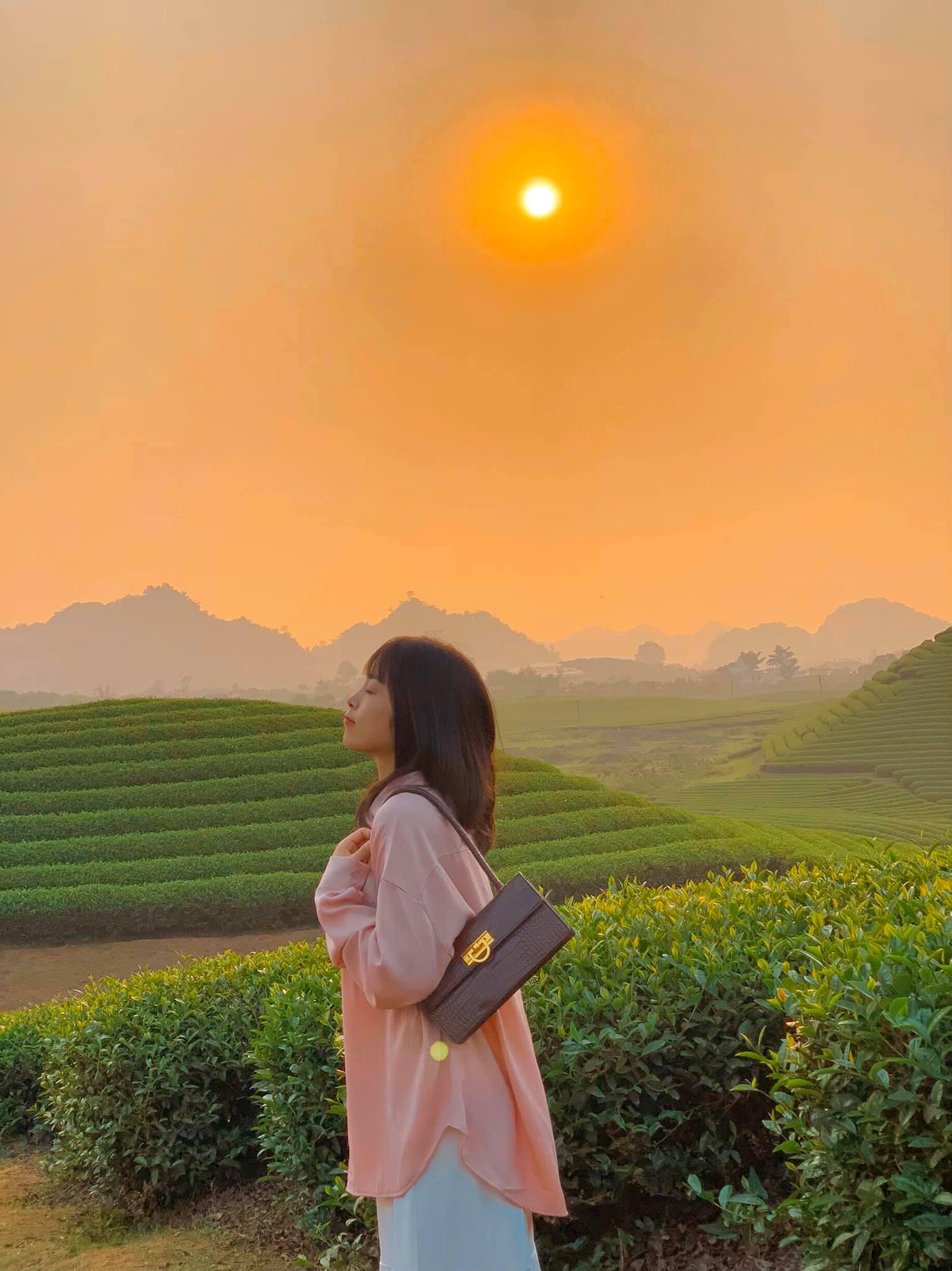 Những đồi chè dưới ánh hoàng hôn. Hình: Nguyễn Viễn