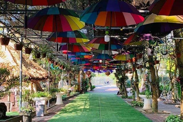 Lối vào khu du lịch Vườn Xoài Nam Hồng, Đông Anh được bao phủ bởi nhiều cây xanh mát hai bên