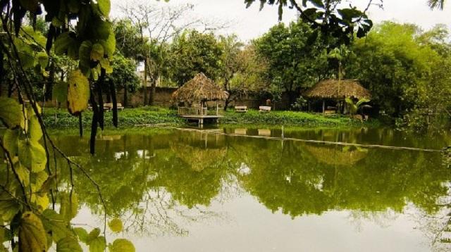 Khu du lịch sinh thái Vườn Xoài Nam Hồng, Đông Anh là điểm đến lý tưởng cho nhiều gia đình và nhóm bạn bè đến vui chơi, nghỉ dưỡng vào dịp cuối tuần
