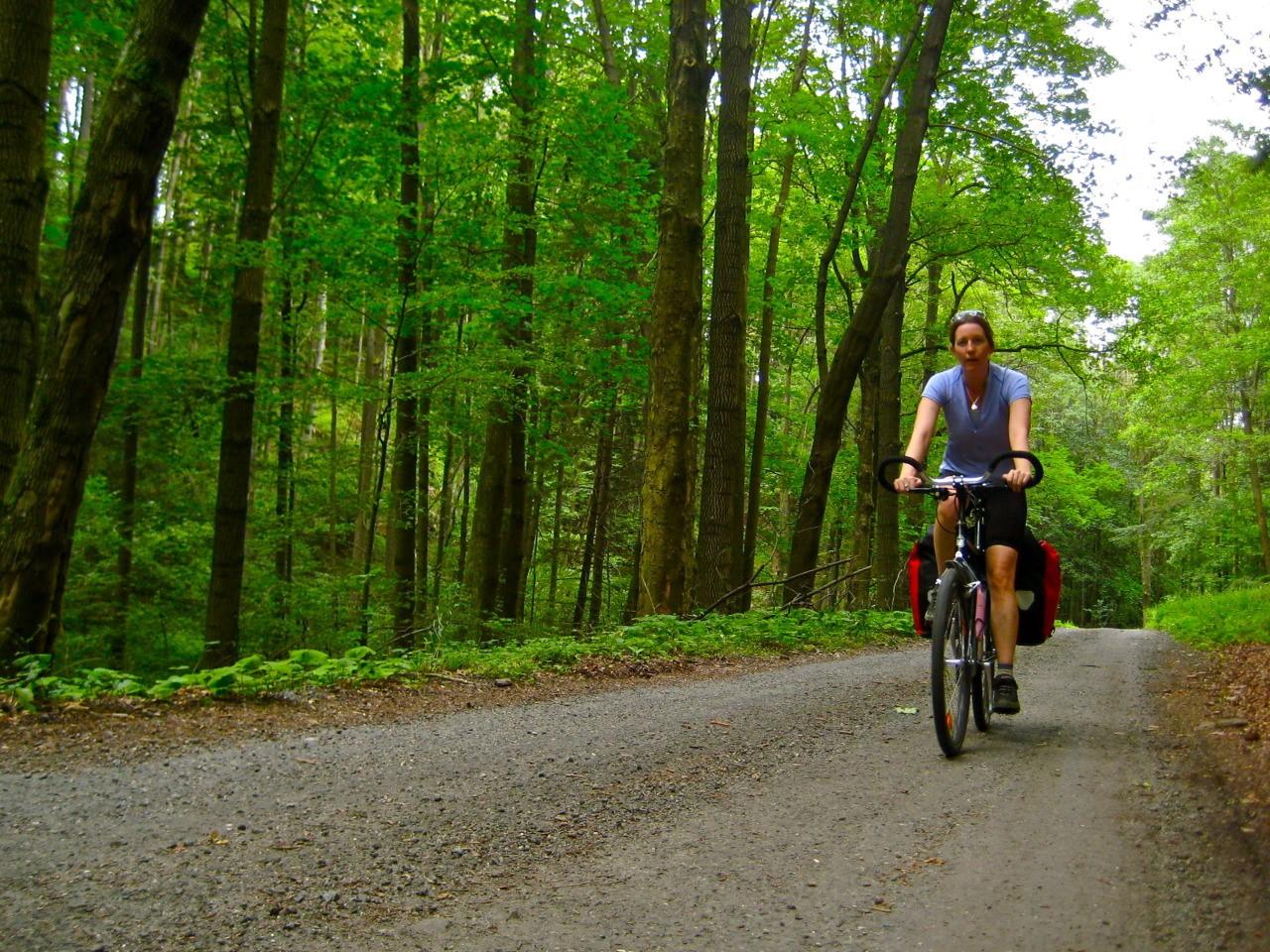 Sử dụng xe đạp hoặc phương tiện công cộng khi đi du lịch. Hình: Sưu tầm
