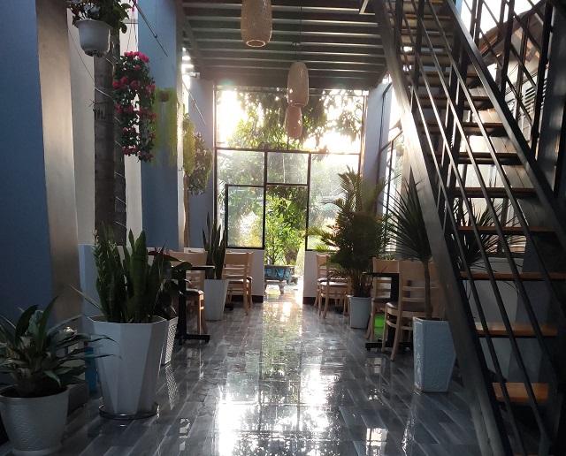 Không gian tại quán cafe và trà sữa Hoa Giấy vô cùng thoáng đáng, mát mẻ với nhiều cây xanh được đặt trong nhà và ngoài trời