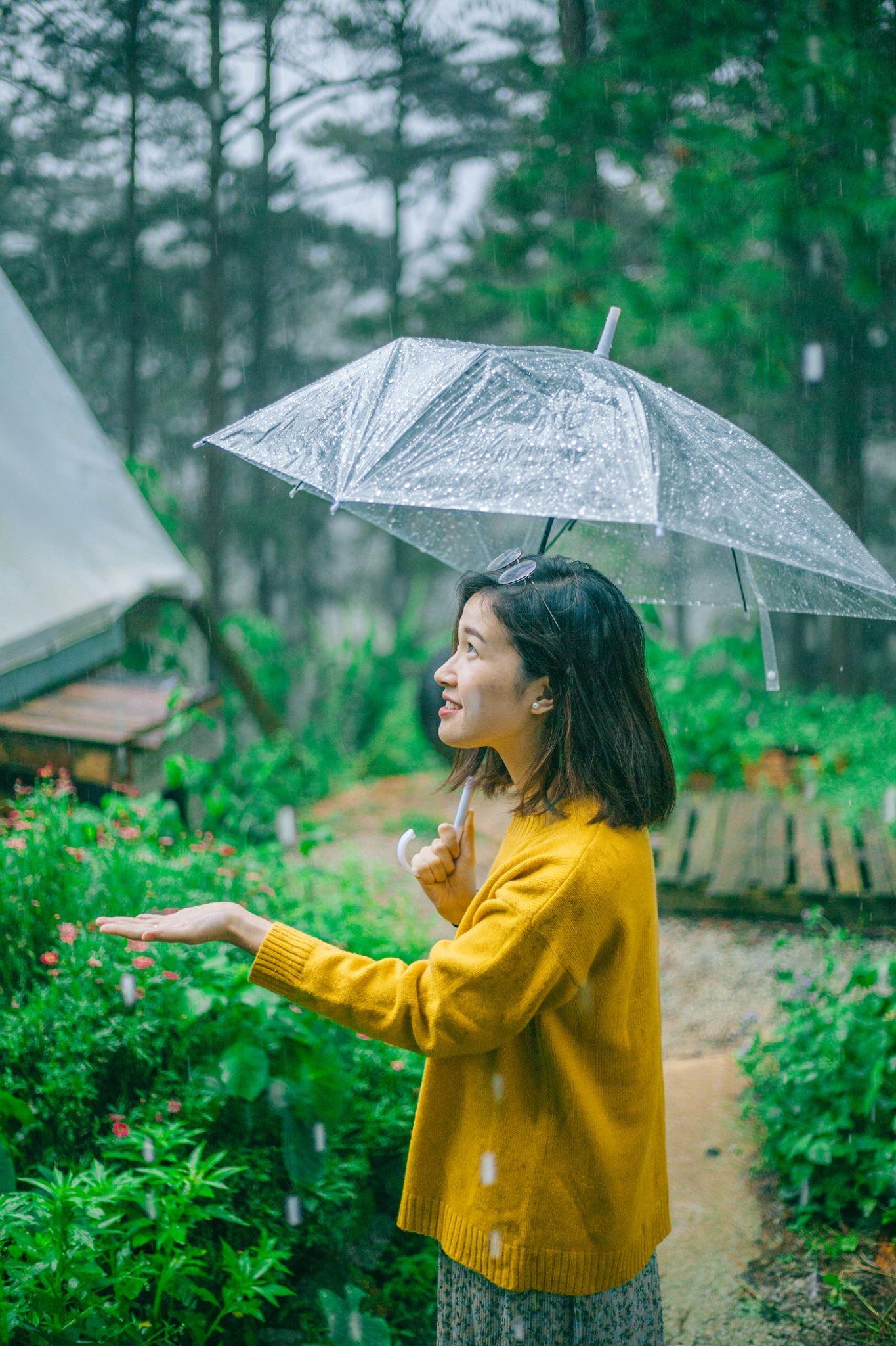 Đà Lạt mùa mưa. Hình: Sơn Đoàn