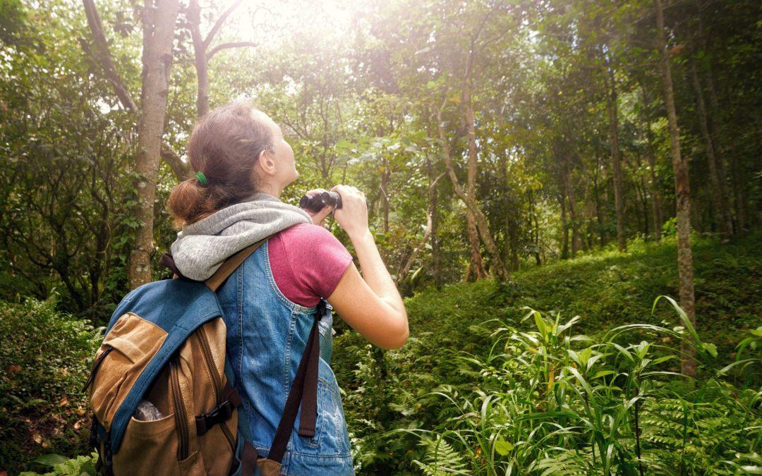 Du lịch bền vững đảm bảo bảo tồn thiên nhiên và bảo vệ môi trường. Hình: Sưu tầm