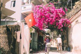 Sắc hoa mùa Hạ xứ Huế