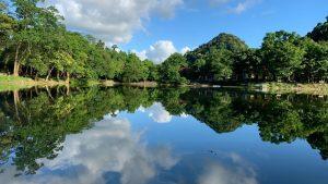 Vườn Quốc gia Cúc Phương – Điểm đến của thiên nhiên và động vật hoang dã