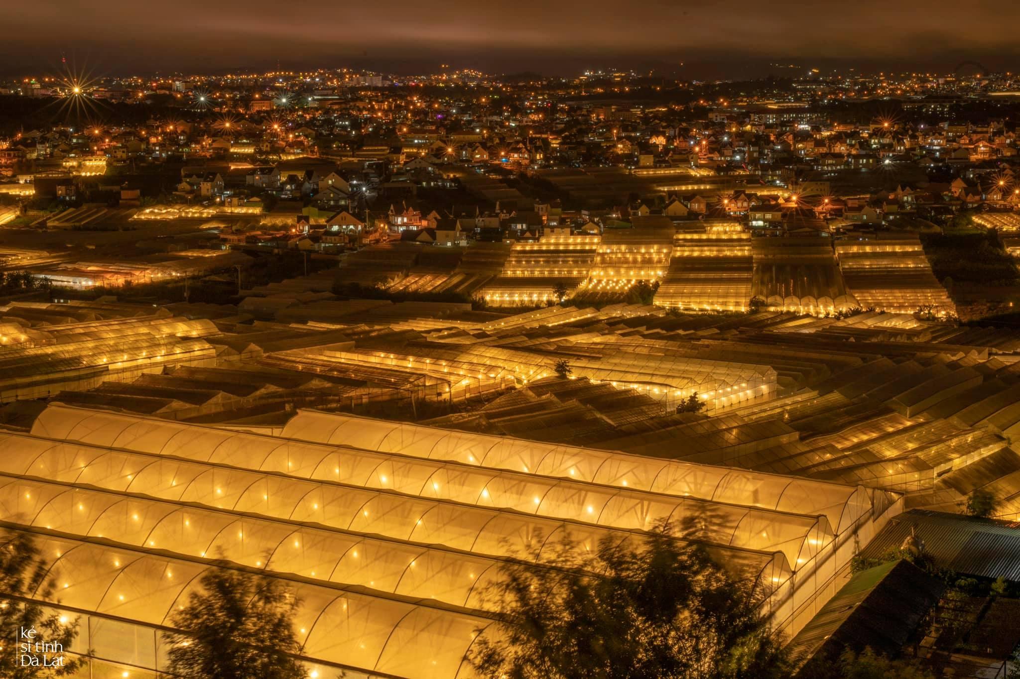 Những ngọn đèn lập lòe sau thành phố. Hình: Minh Sang
